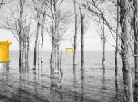 http://spelaskulj.net/files/gimgs/th-114_yellow5.jpg